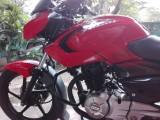 Bajaj pulsar 2013 Motorcycle