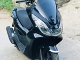 Honda HONDA PCX 125 LED WITH PAPER SET 2019 Motorcycle
