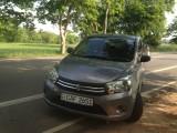 Suzuki suzuki celario 2014 Car