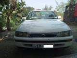 Toyota Corolla EE101 1992 Car